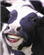 Drakejr55's avatar