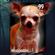 hitStickB00M's avatar