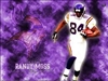 the_purple_haze's avatar