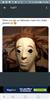 thehumdinger504's avatar