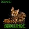 gbwisc's avatar
