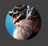 M0rdresh's avatar