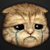 Ipulleda99CalvinJohnsonJR's avatar